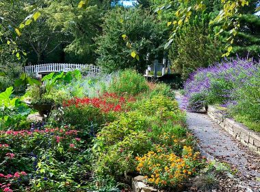 Chris Mikesell Foundation Barlett Arboretum October 2018