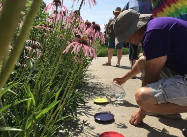 Chris Mikesell Foundation Hands On Environmental Learning